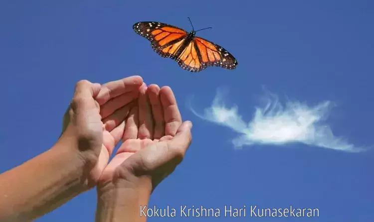 Detachment Attachment KKKHari